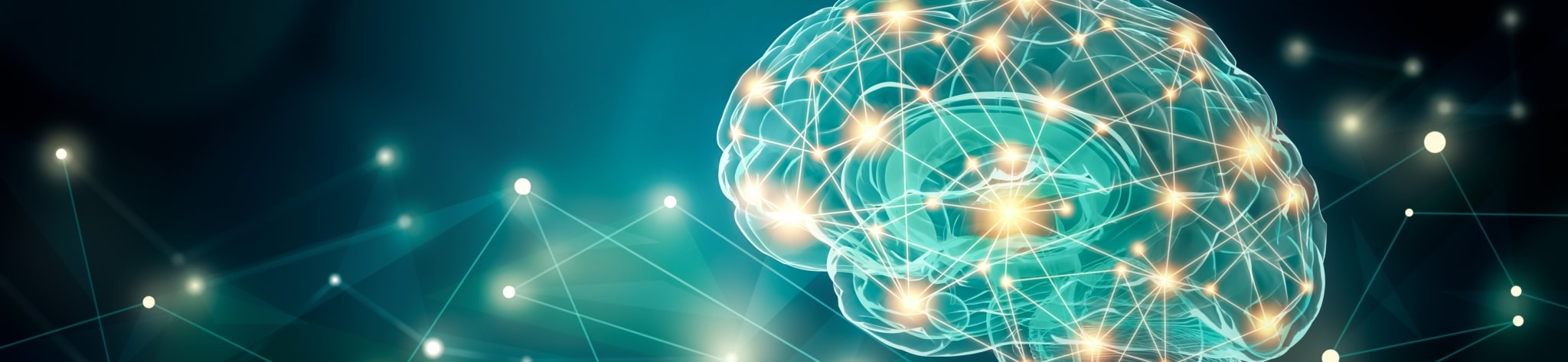 Picture of neuroscience